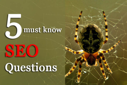 5 SEO Questions Every Entrepreneur Must Know