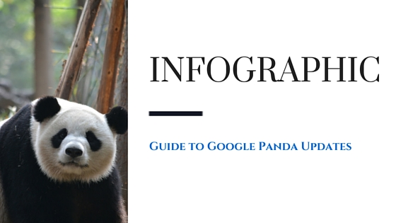 Complete Guide to Panda Updates Infographics